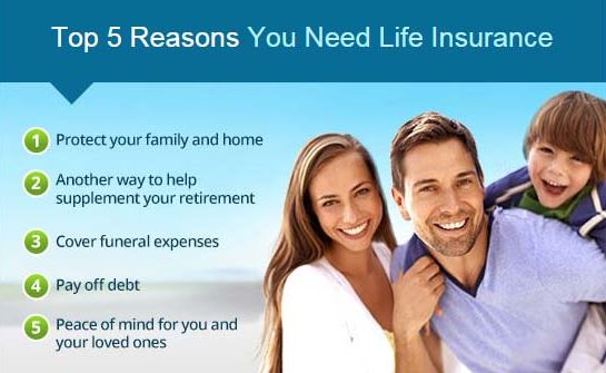 Get Life Insurance Quotes New Get Free Life Insurance Quotes With Life Insurance Pro  Okay